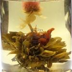 Квітуча лілія 2